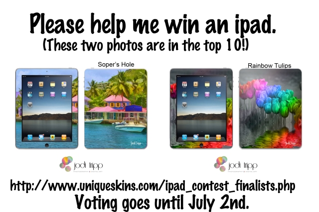 Please Vote for my ipad designs.